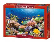 PUZZLE 1000EL. CORAL REEF FISHES